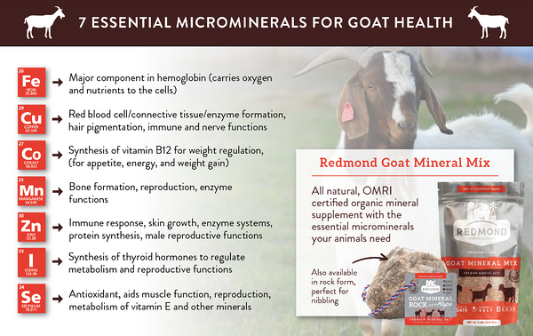 7 Essential Microminerals For Goat Health