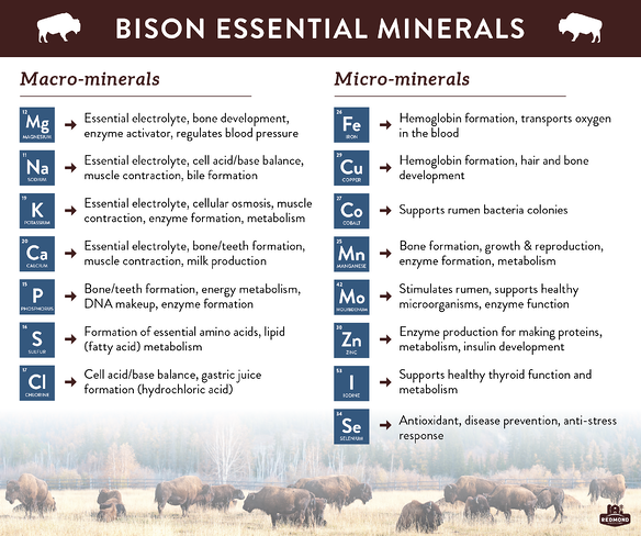 What minerals do bison need?