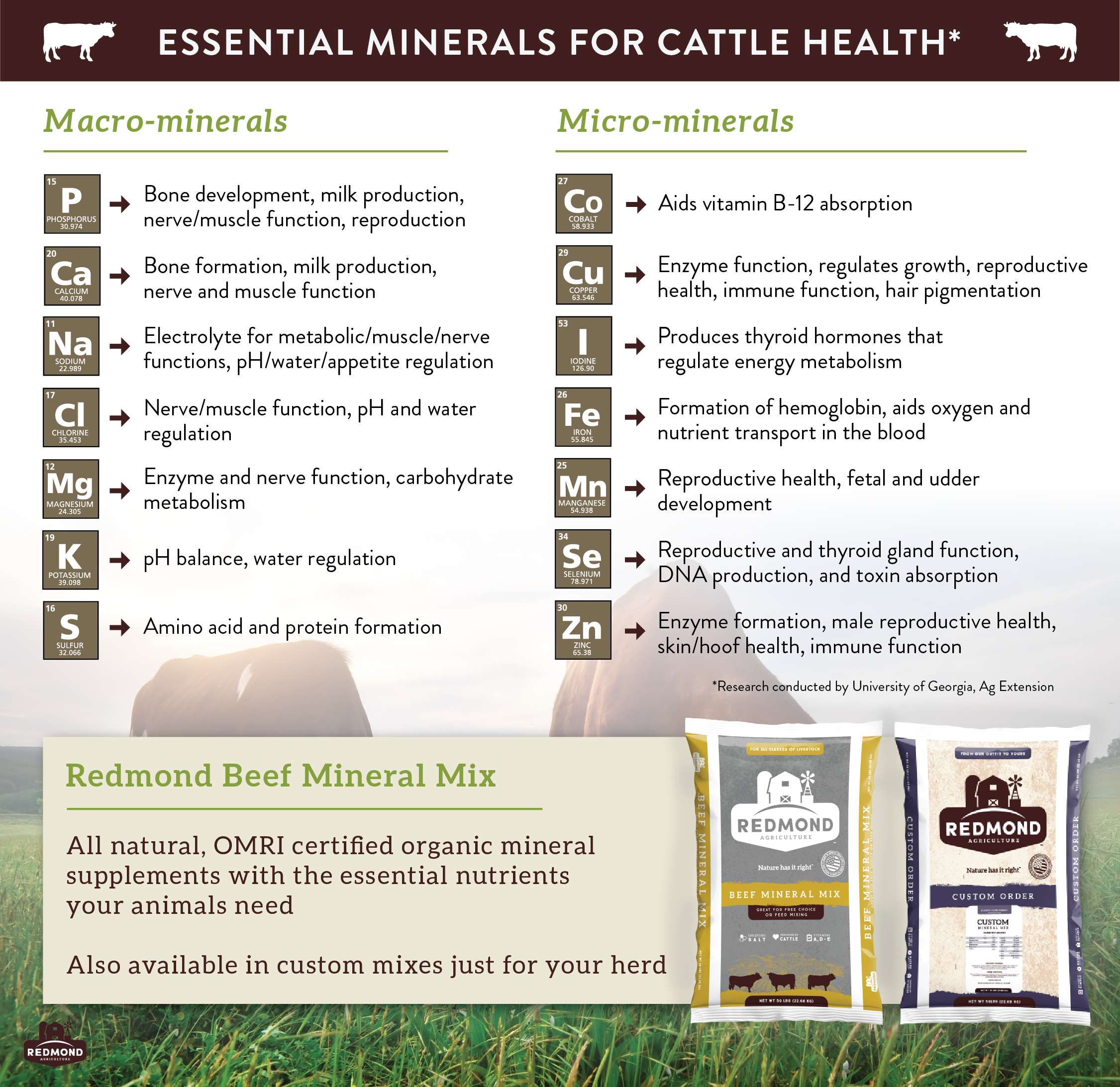 Essential macrominerals and microminerals for cattle health