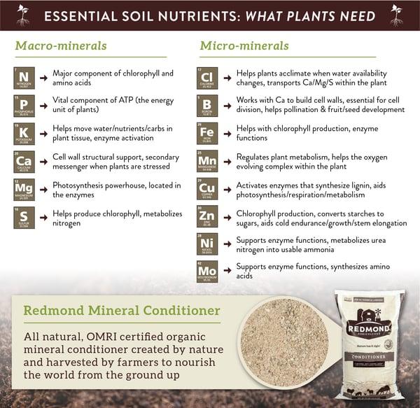 How Essential Soil Health Nutrients help plants grow