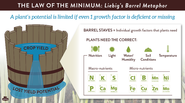 Liebig's law of the minimum, plant growth factors