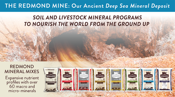 Redmond ancient deep sea mineral products