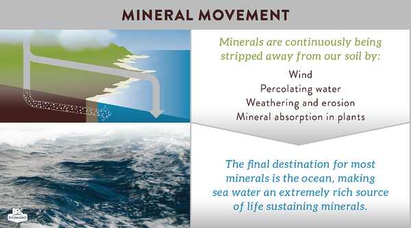 How minerals are leached from our soil