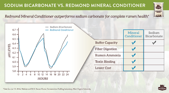 Redmond mineral conditioner to buffer rumen health