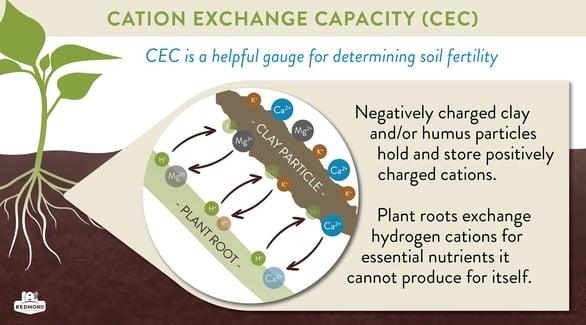 Cation exchange capacity
