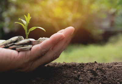 Hand holding coins and a growing plant